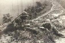 对越反击战为什么有一群越南人帮解放军打越军?这里