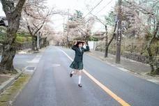 仙女妹妹寻觅日本别样风光,四月樱花树下的绚丽