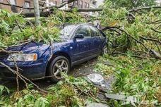 """""""山竹""""走了,2.69万辆被树砸、水淹的车谁来赔?保险"""